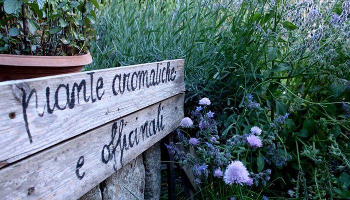 piante aromatiche e officinali, orti in Cuccagna